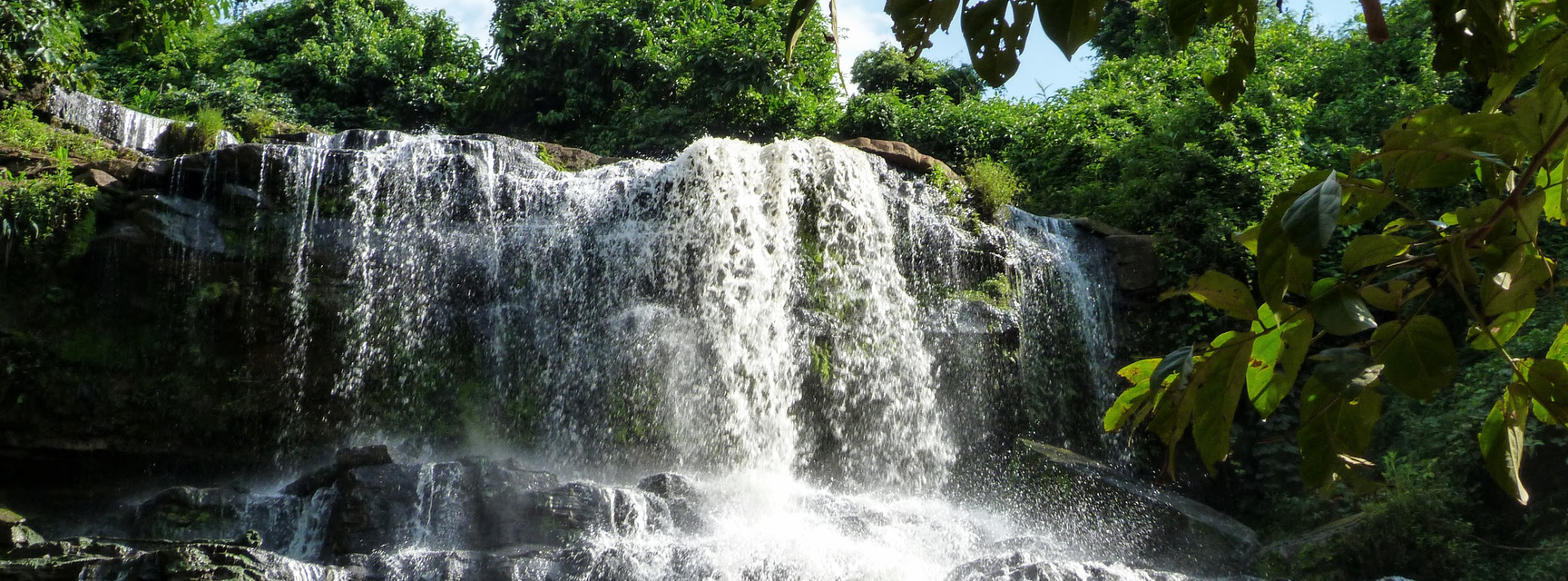 waterfall with trees in foreground